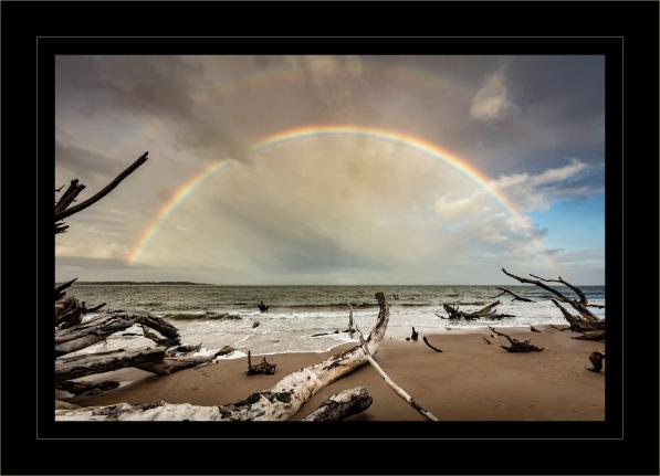 jg-big-talbot-rainbows-alt-c